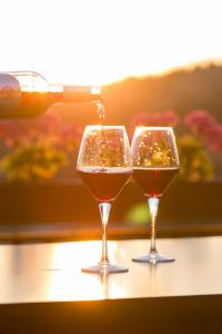Fakta om alkohol og kan en alkoholiker behandles?